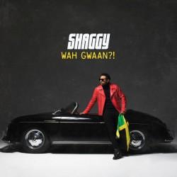 Shaggy / CD