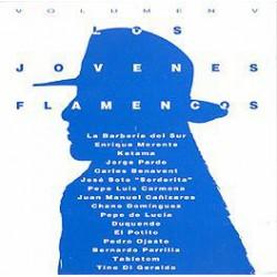 Varios / Jóvenes flamencos
